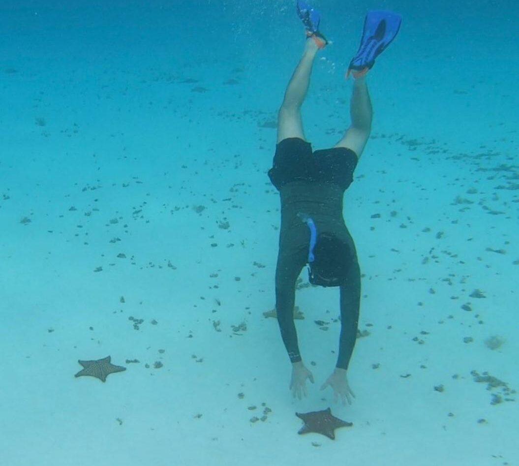 Estrellas de mar en El Cielo