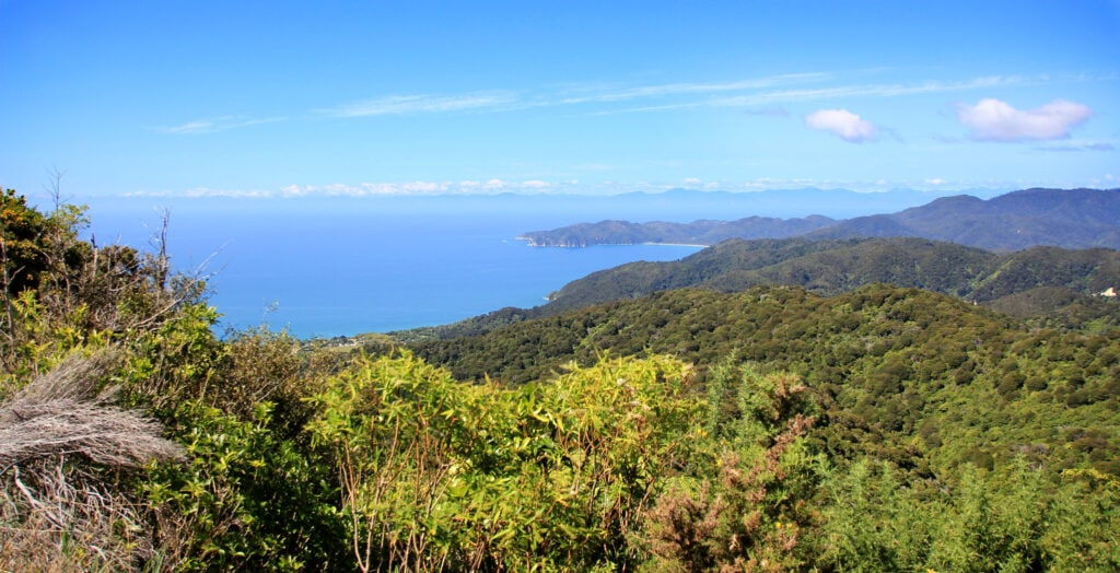 Colina de Gibbs Hill, Abel Tasman