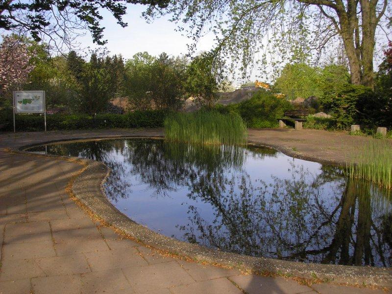 jardín botánico de Maguncia