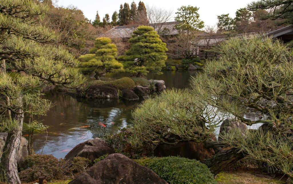 Castillo Himeji y jardines, Japón