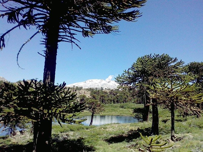 Laguna escondida, Caviahue