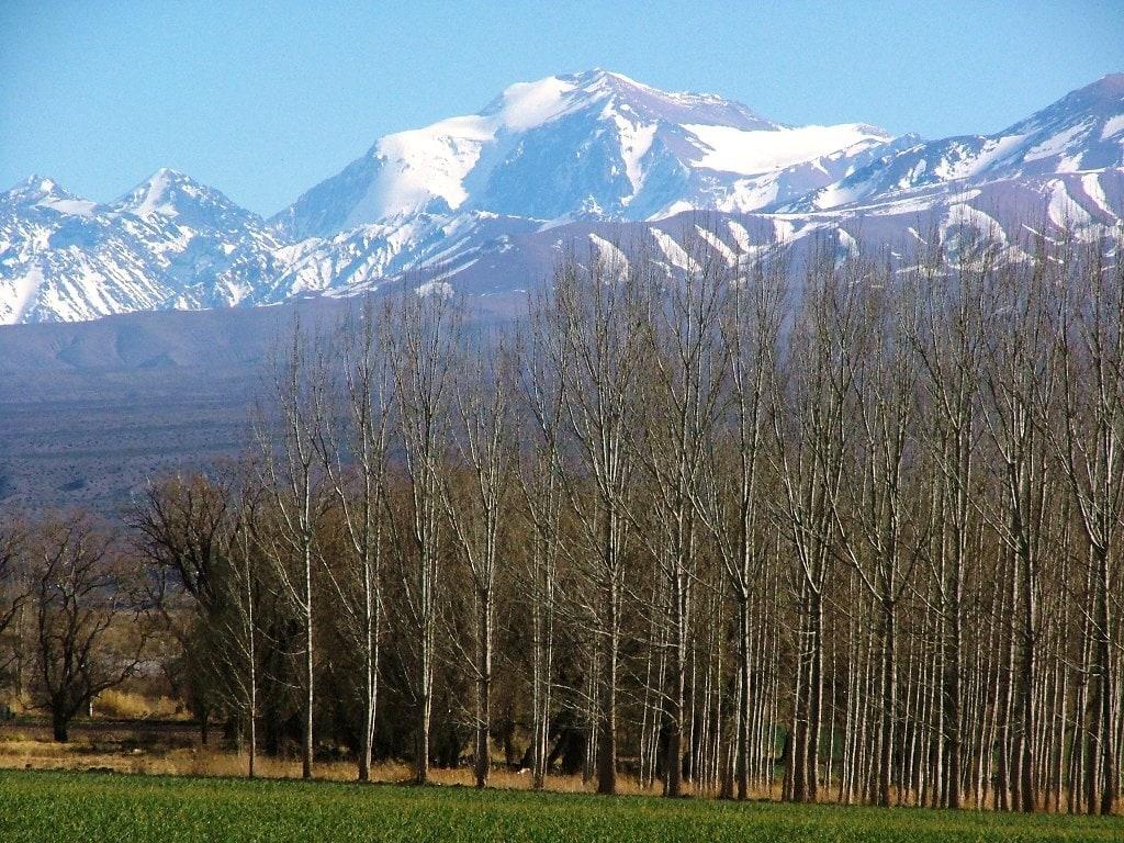 Barreal y Cerro Mercedario de fondo