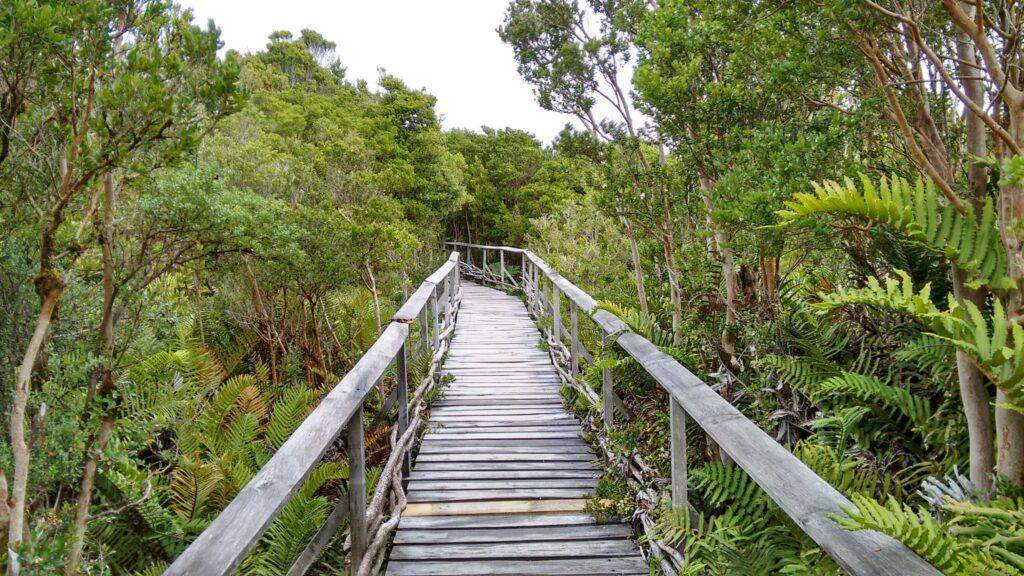 Parque Nacional Chioloé