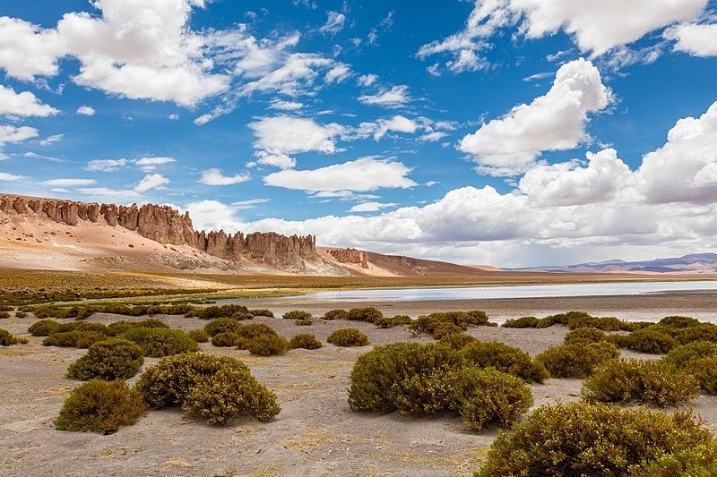 Salar de Tara, Chile