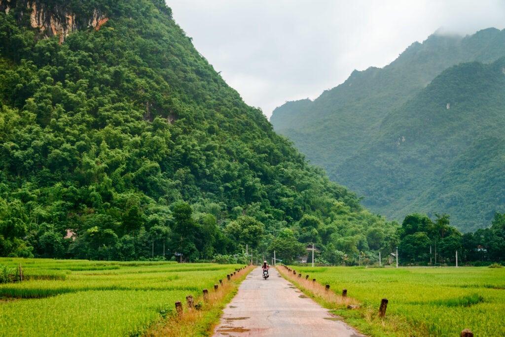 Paseo-en-carne-por-Vietnam