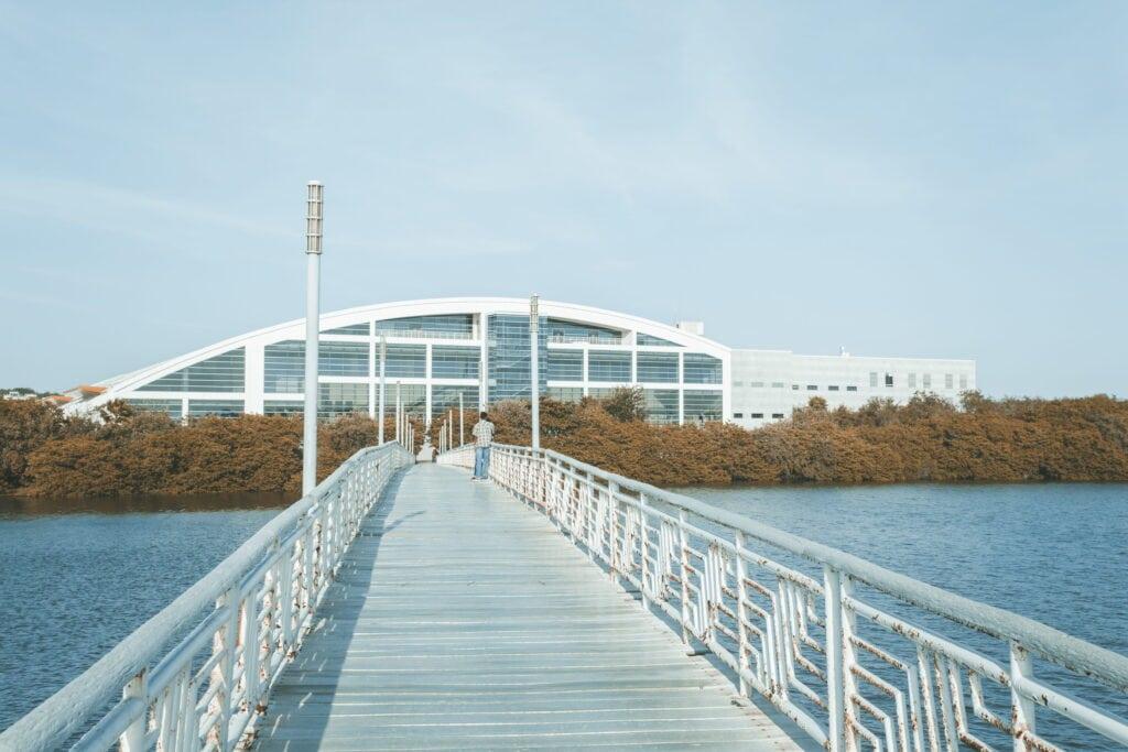 laguna-del-carpintero-tampico