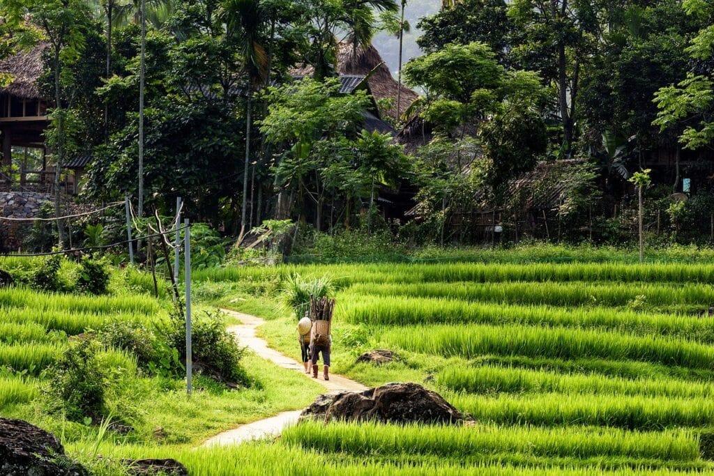 pu-luong-Vietnam