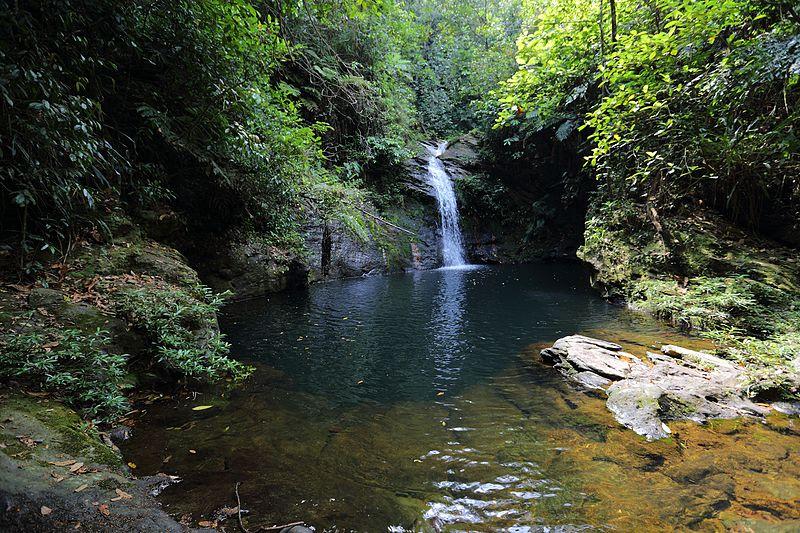 Reserva-Natural-de-Cockscomb