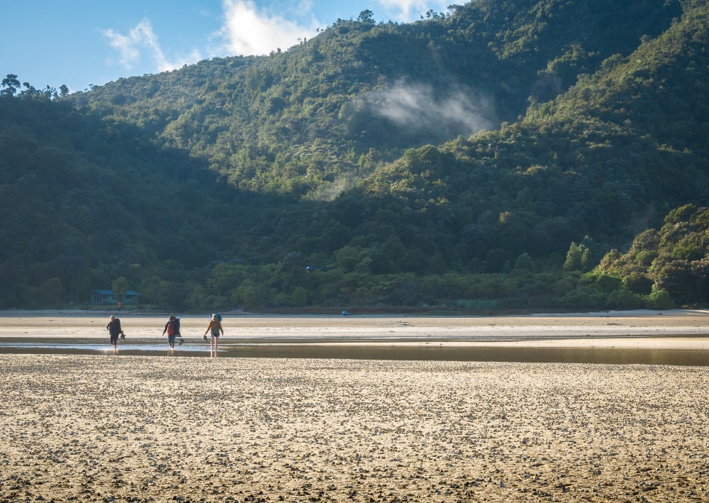 Parque-de-Nueva-Zelanda