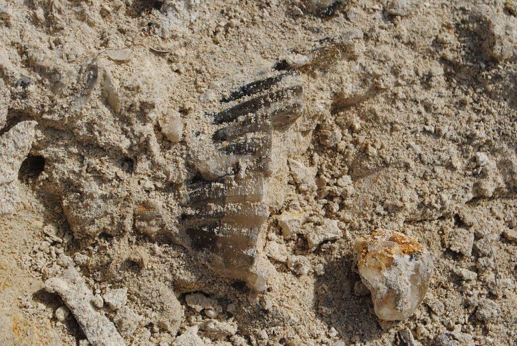 cañadón-de-las-ostras-río-negro