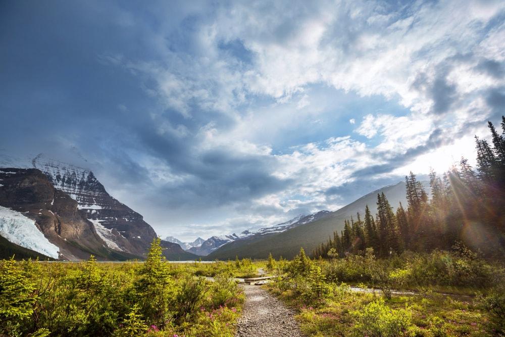 Monte-Robson